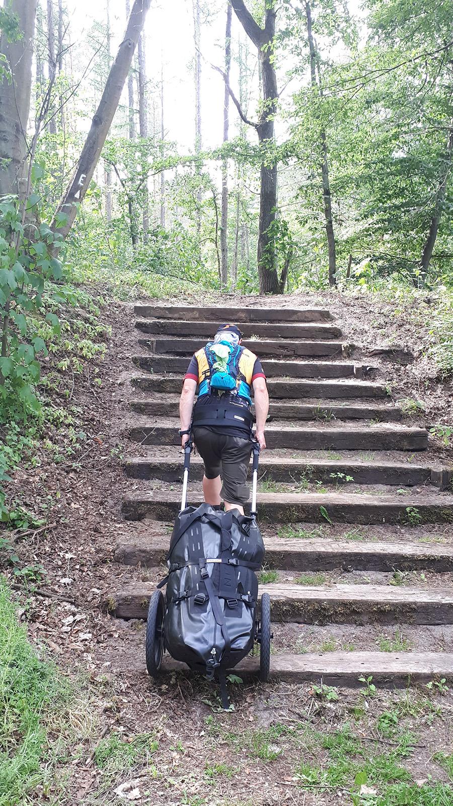 Mit Pilgerwagen eine Holztreppe im Wald hochsteigen