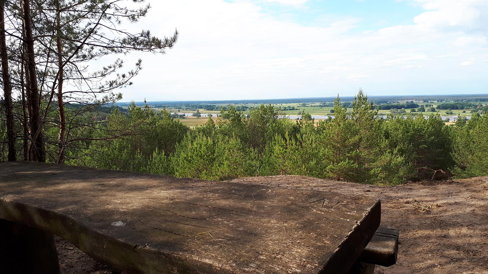 Blick von einem Hügel auf die Elbe