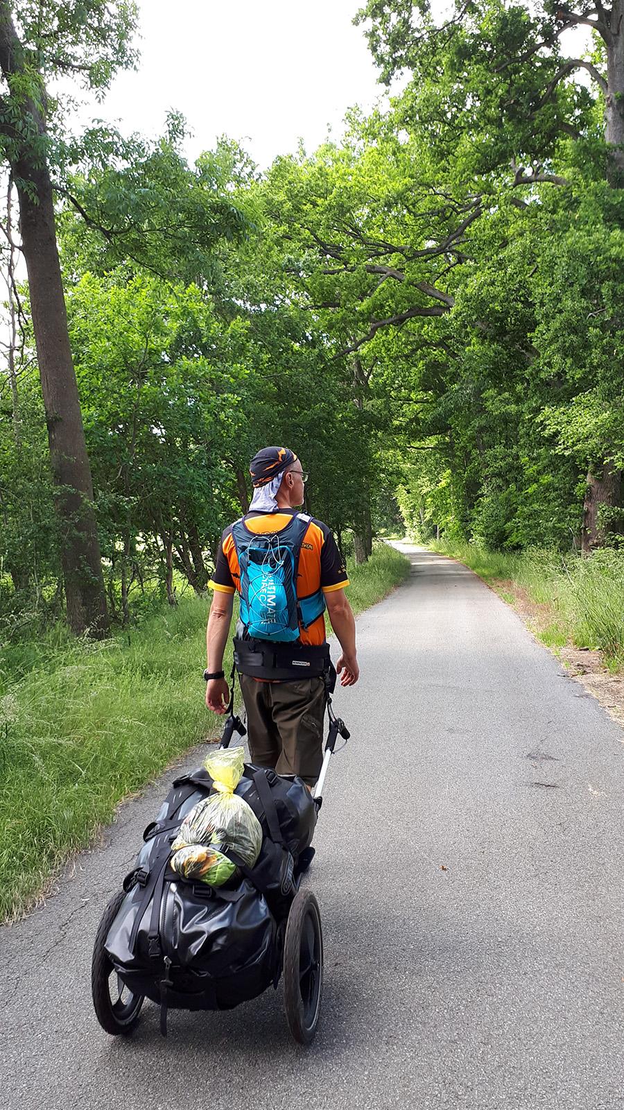 Mit Pilgerwagen auf einem asphaltierten Waldweg unterwegs
