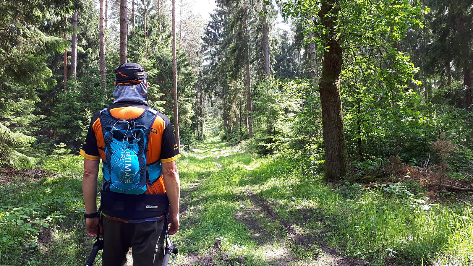 Pilgerwagennomade im Wald