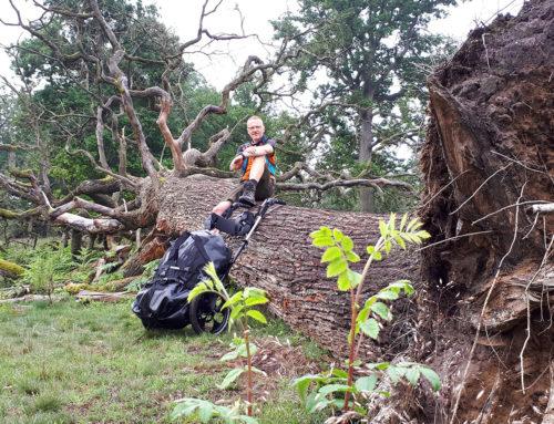 Wendlandrundweg: Wanderung mit Pilgerwagen
