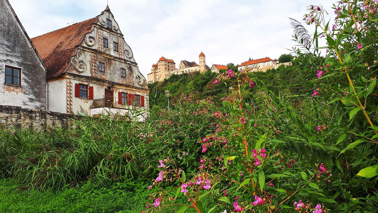 Blick von Harburg auf die Harburg