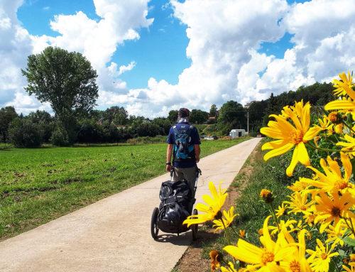 Romantische Straße von Würzburg bis Donauwörth: Wanderung mit Pilgerwagen