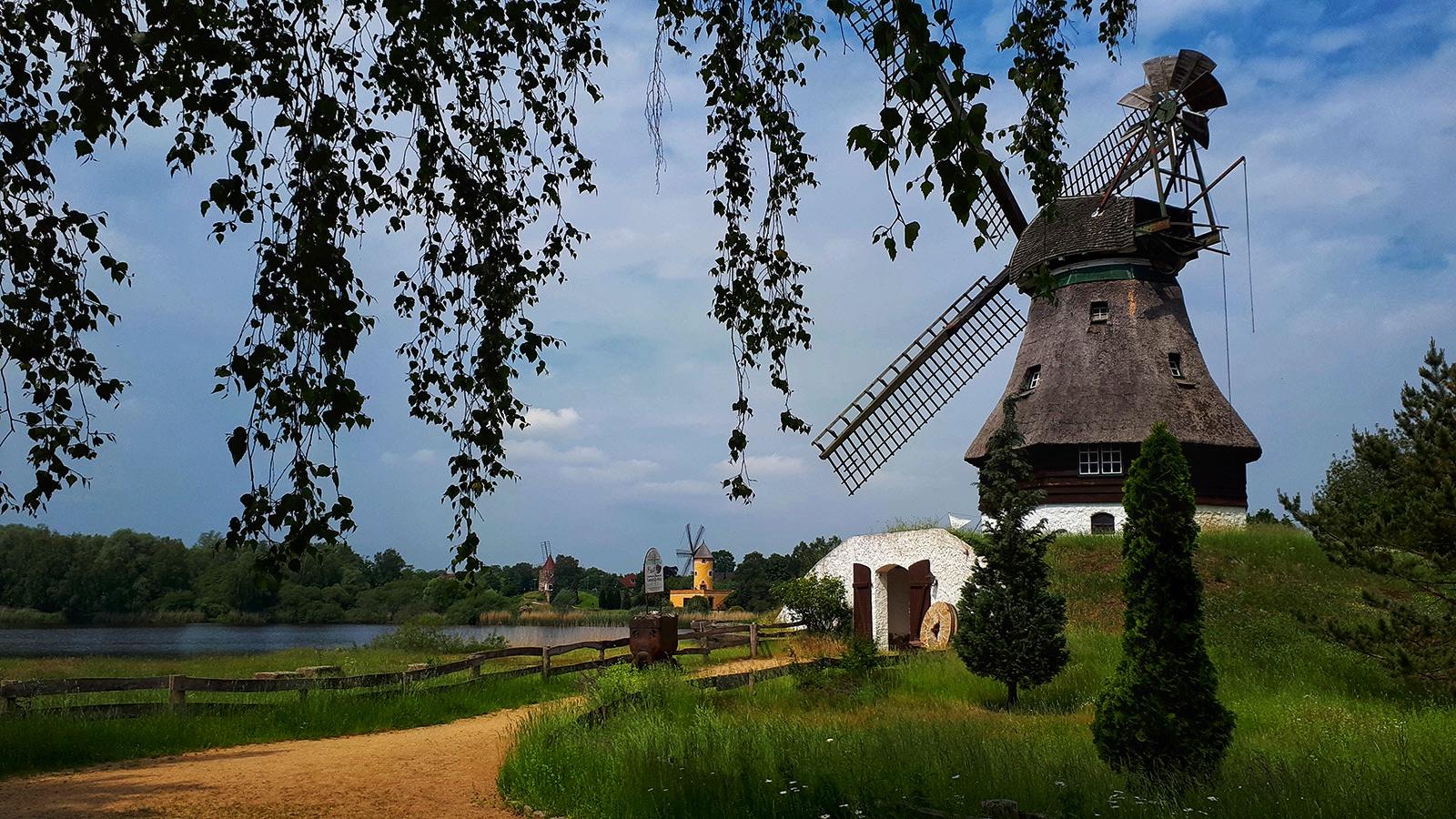 Windmühle im Mühlenmuseum Gifhorn