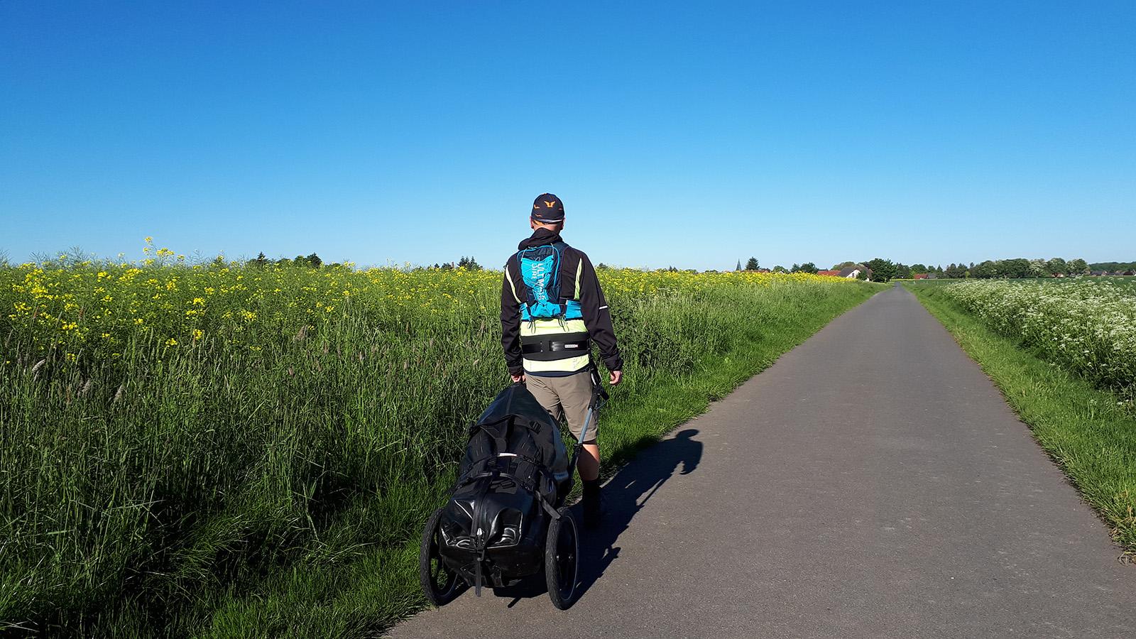 Wanderer mit Pilgerwagen vor Rapsfeld