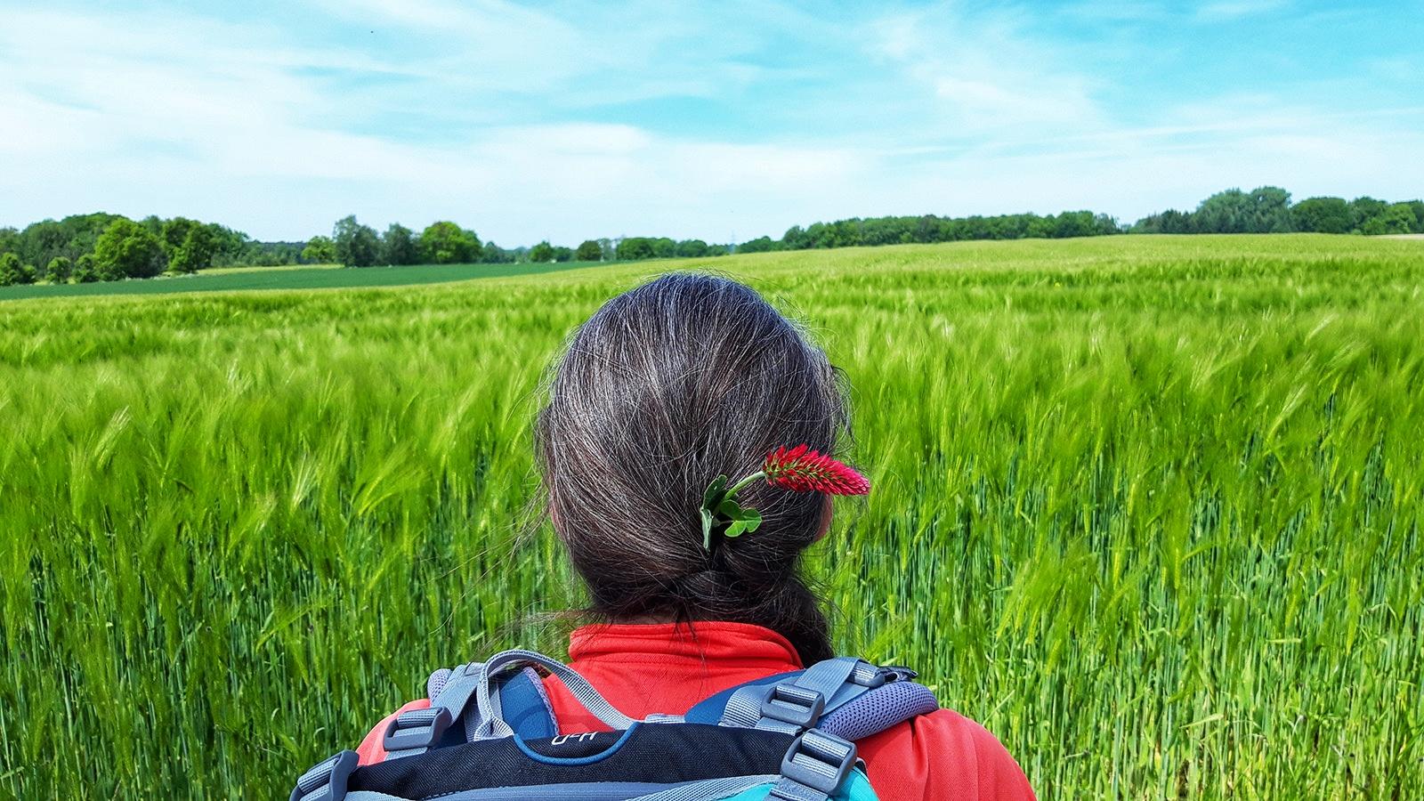 Wanderin mit Blume im Haar blickt auf ein Feld