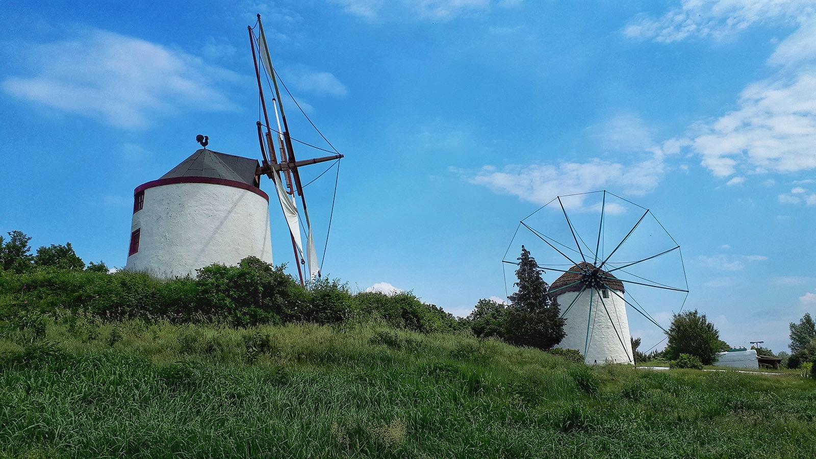 Zwei Windmühlen im Mühlenmuseum Gifhorn