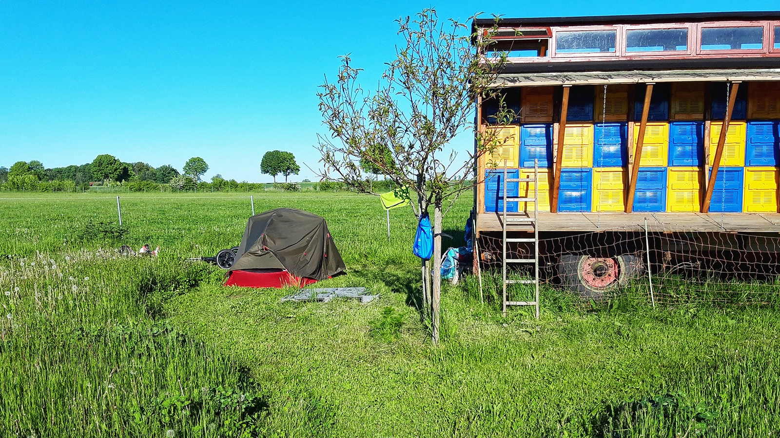 Kleines Zelt neben Imkerwagen auf Streuobstwiese