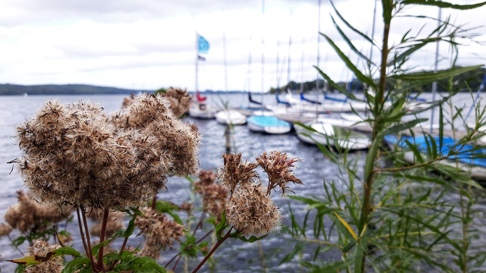 Blick auf den Ratzeburger See